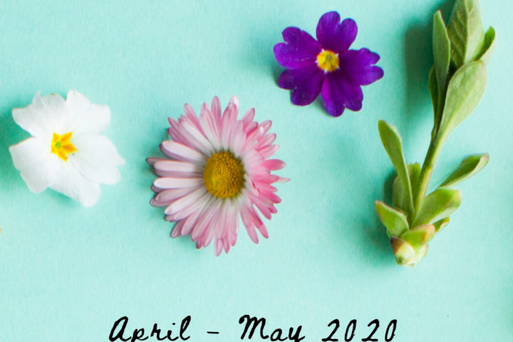 Cover page of Spring Newsletter
